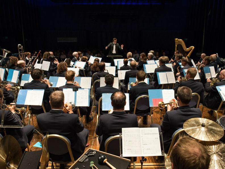 Image 0 - Orchestra Vivace della Riviera