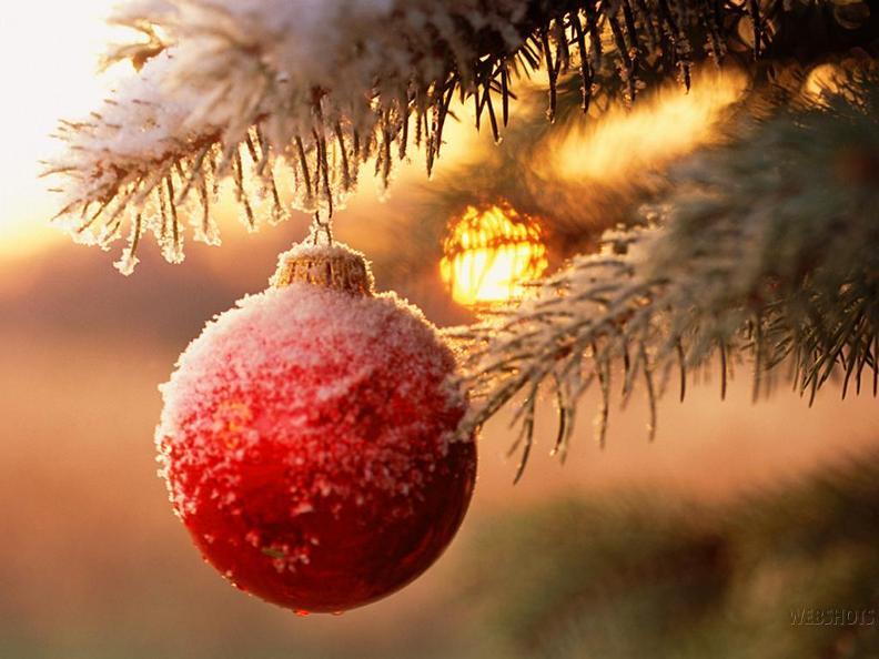 Image 0 - Weihnachtsmarkt von Biasca
