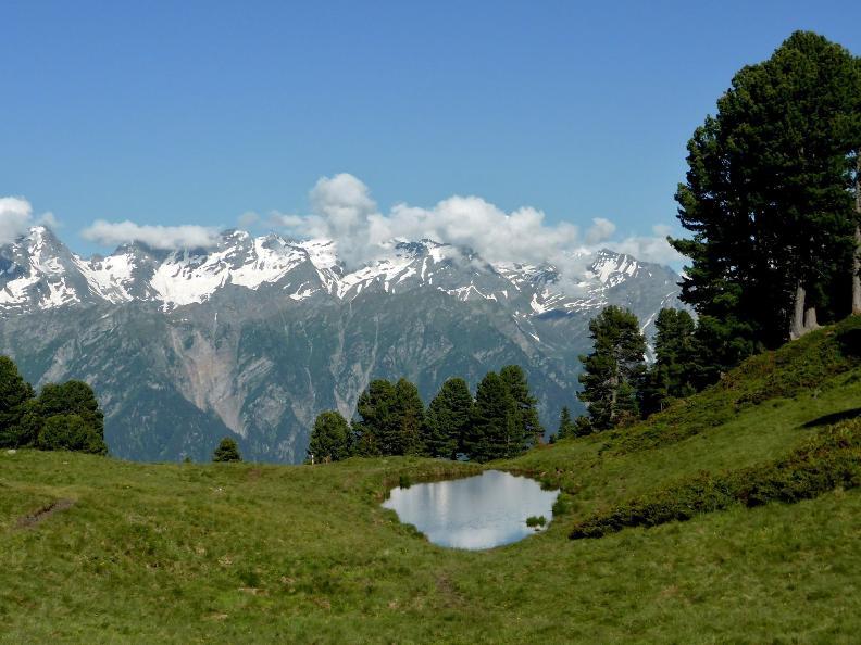 Image 1 - Sentieri Naturalistici del Lucomagno - Gite accompagnate 2020