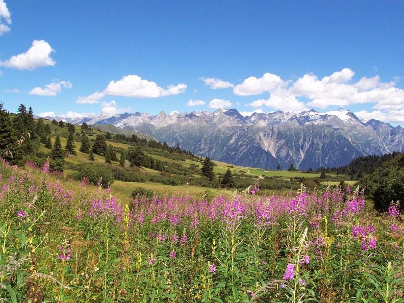 Image 0 - Sentieri Naturalistici del Lucomagno - Gite accompagnate 2020