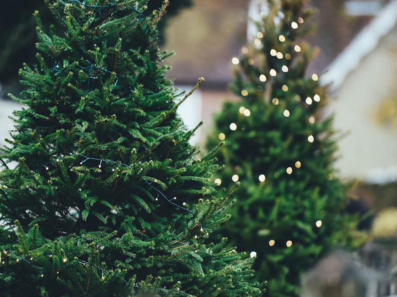 Image 2 - Mercatino di Natale di Campo Blenio