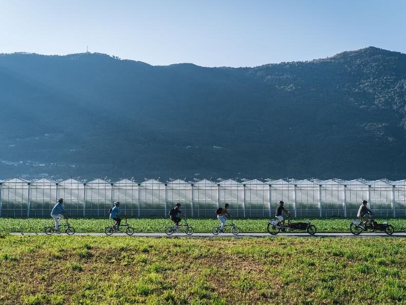 Image 9 - La spesa in fattoria