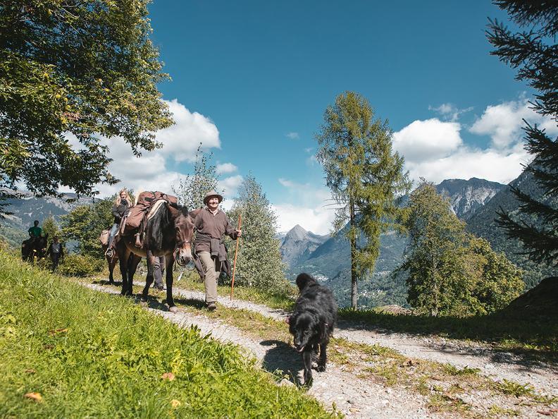 Image 0 - SOMARELLI - Trekking und Abenteuer mit Tieren