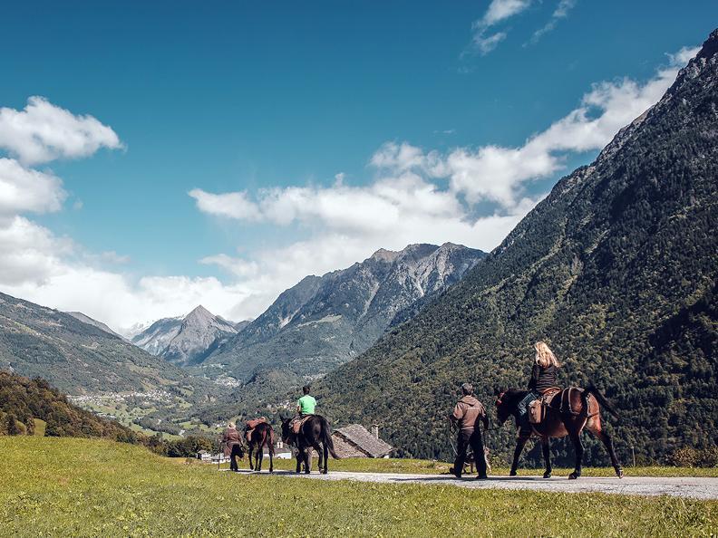 Image 2 - SOMARELLI - Trekking und Abenteuer mit Tieren