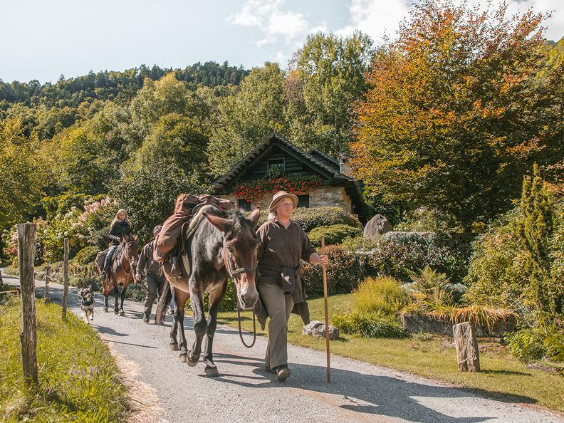 Image 4 - SOMARELLI - Trekking e avventure con gli animali