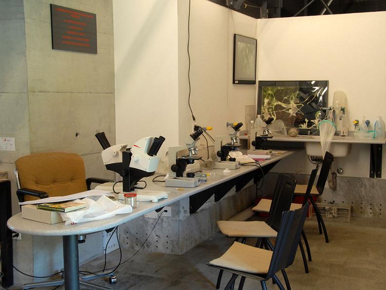 Image 2 - Alpine Biology Center Piora