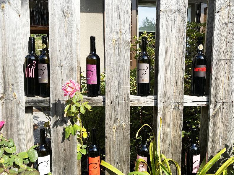 Image 12 - Wine cellar Settemaggio