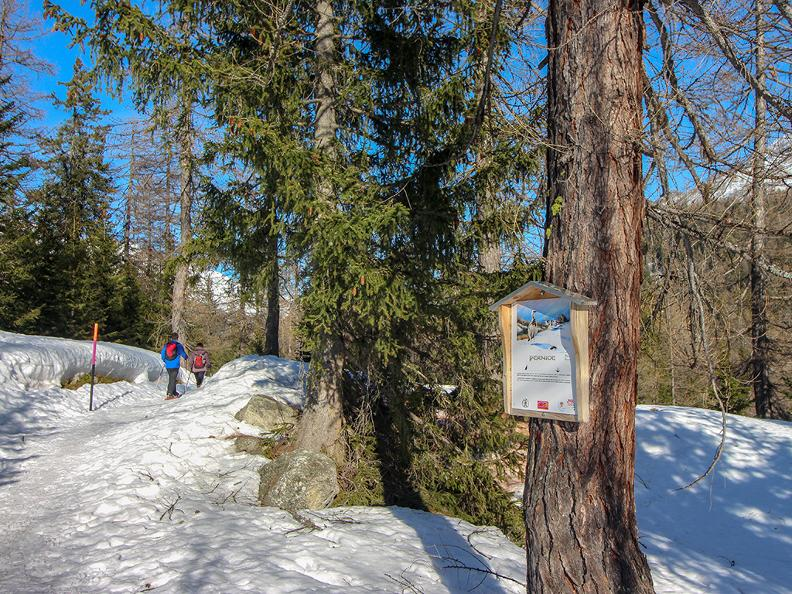 Image 4 - Stazione sciistica Cioss Prato - Valle Bedretto