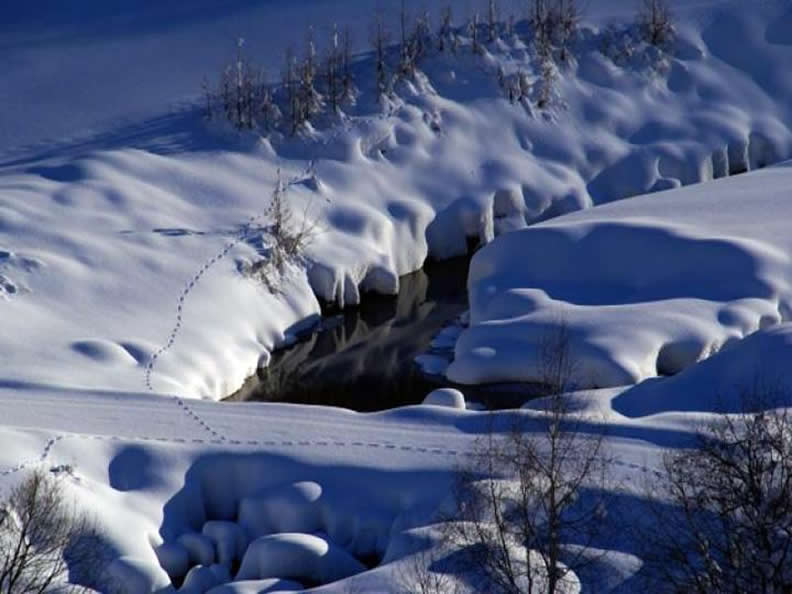 Image 3 - Ski de fond à Bedretto