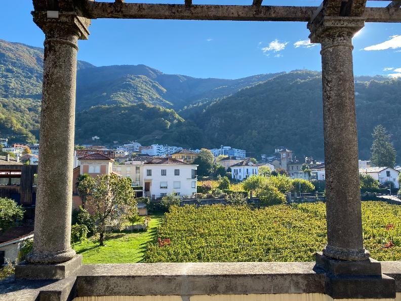 Image 9 - Musée Villa dei Cedri
