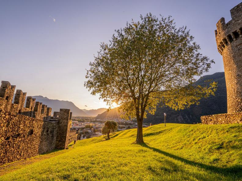 Image 3 - The Castle of Montebello