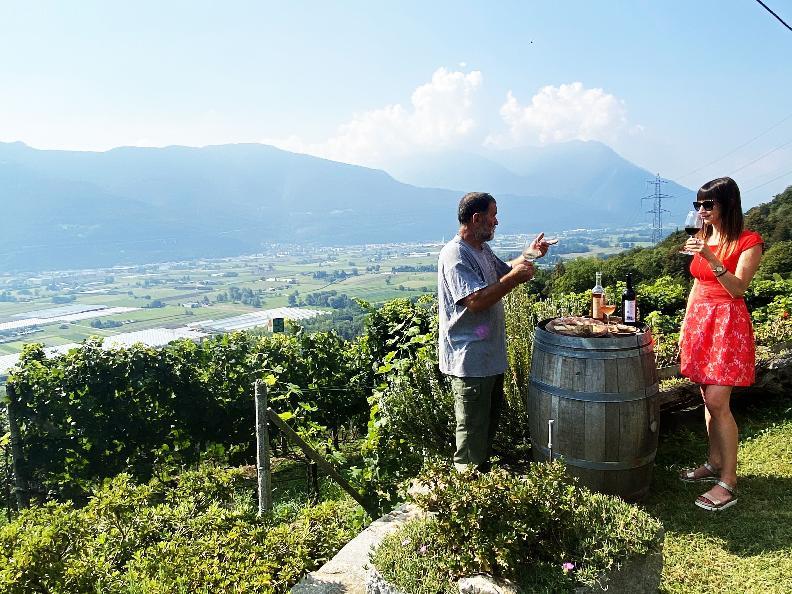 Image 5 - Wine cellar Mondò