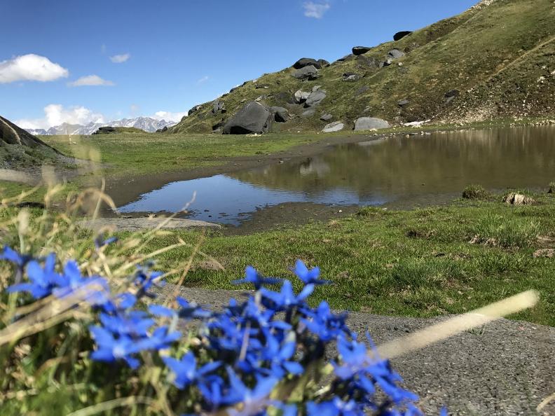 Image 10 - Campo Blenio - estate