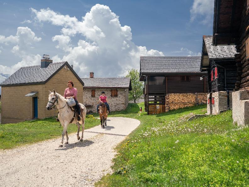 Image 11 - Equitazione in Valle Leventina: Leventina Western