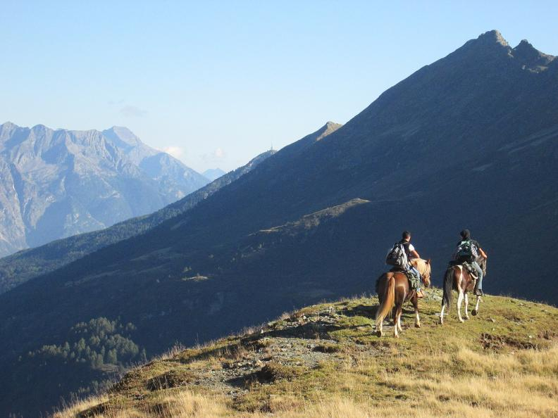 Image 8 - Reiten in Valle Leventina: Leventina Western