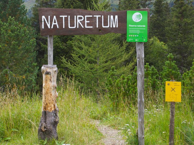 Image 0 - Naturetum - Centro Pro Natura Lucomagno