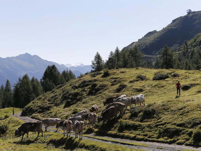 Image 4 - La Strada degli Alpi della Valle Bedretto