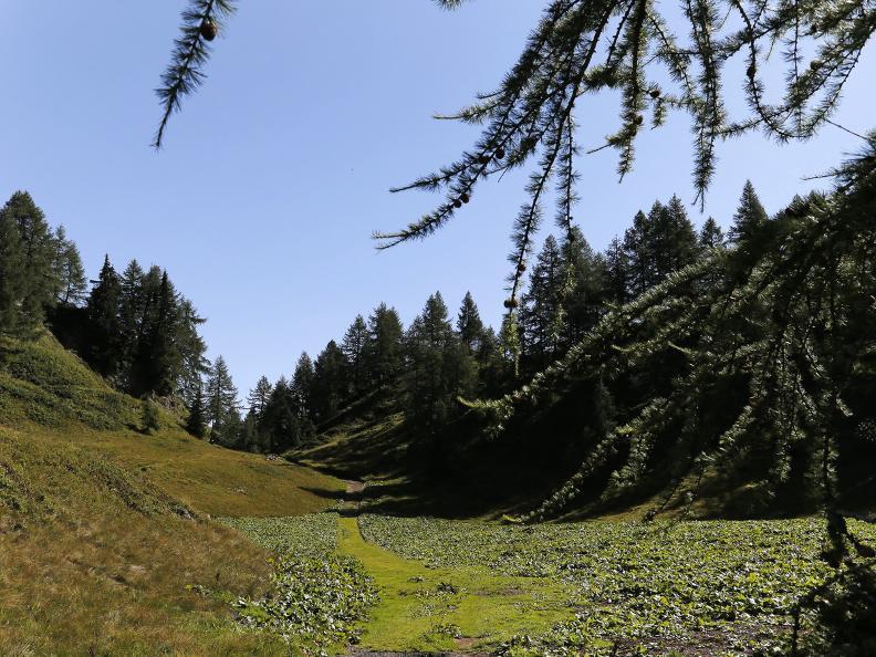 Image 8 - La Strada degli Alpi della Valle Bedretto