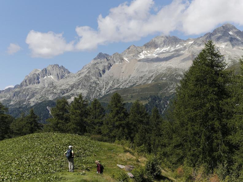 Image 10 - La Strada degli Alpi della Valle Bedretto