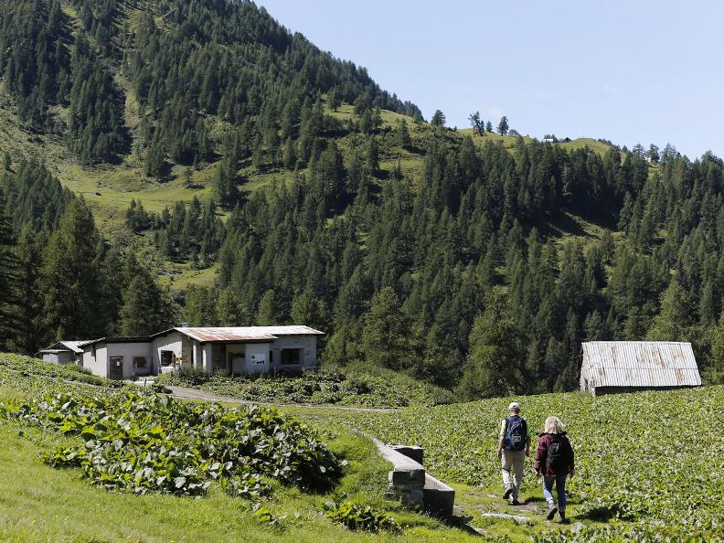 Image 11 - La Strada degli Alpi della Valle Bedretto
