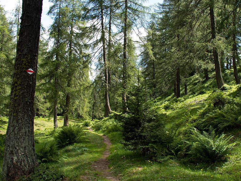 Image 3 - La Strada degli Alpi della Valle Bedretto