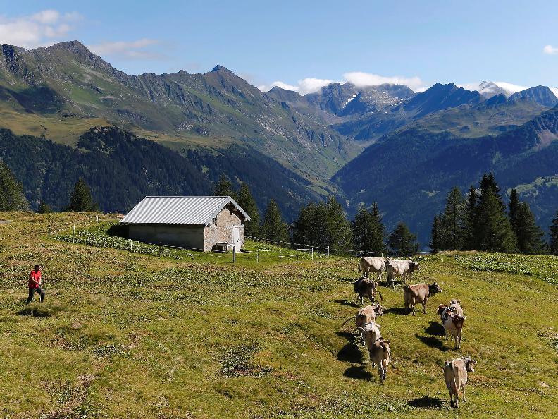 Image 19 - La Strada degli Alpi della Valle Bedretto