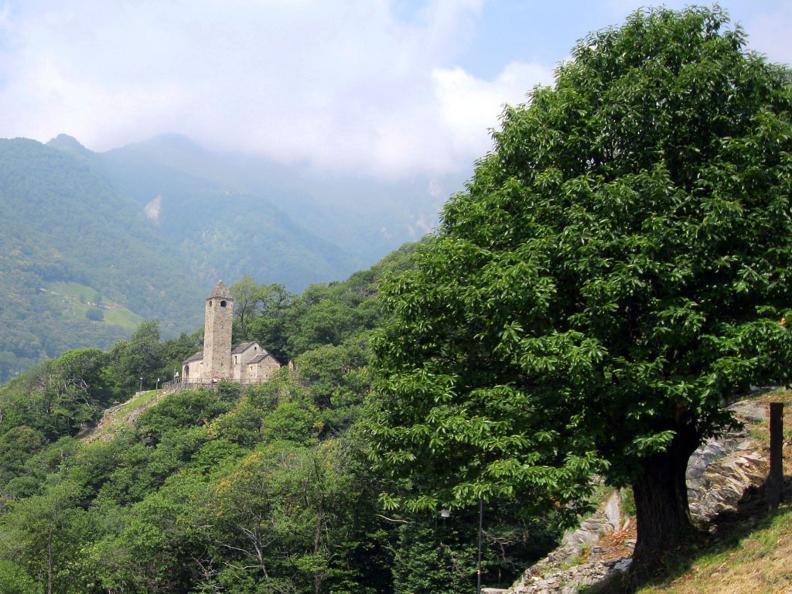 Image 1 - San Bernardo a Monte Carasso