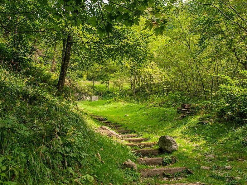 Image 9 - La Via del Ferro in Valle Morobbia