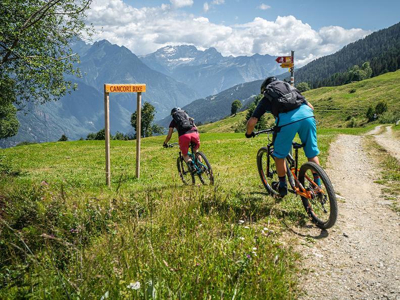 Image 3 - Cancorì Bike