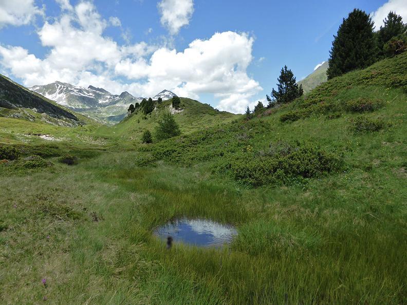 Image 2 - Alpi del Lucomagno