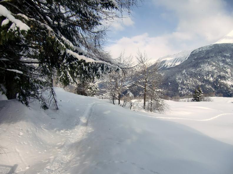 Image 3 - Snowshoe trail - Dalpe