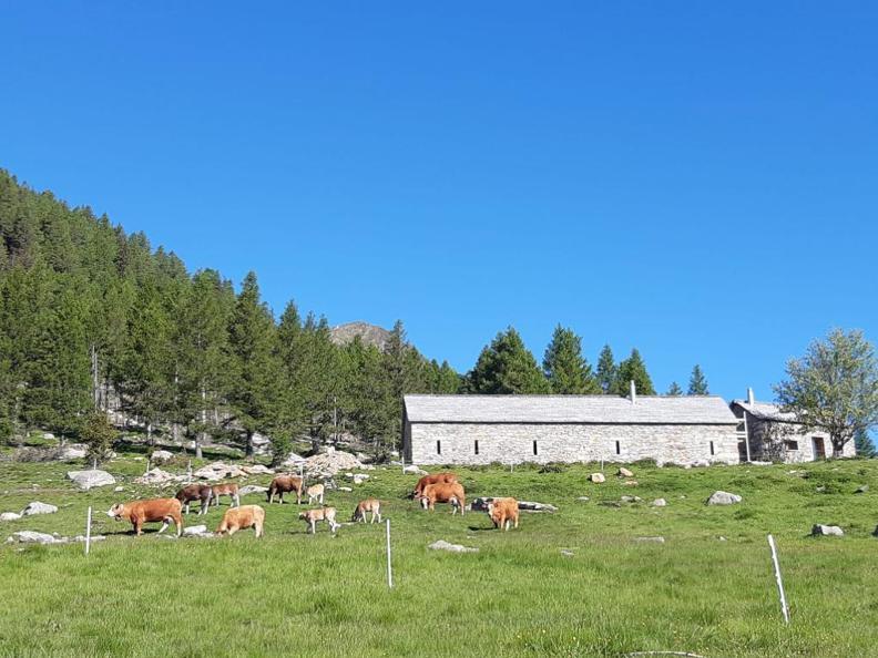 Image 4 - Trekking verso la Capanna Albagno