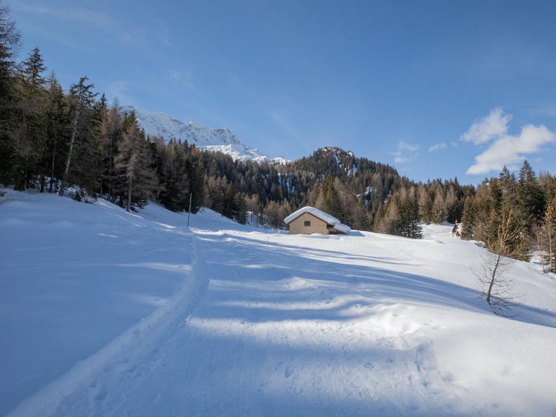 Image 4 - Sentiero invernale Nante-Alpe Nuova