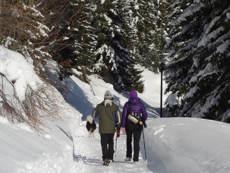 Image 2 - Sentiero invernale Carì-Predèlp