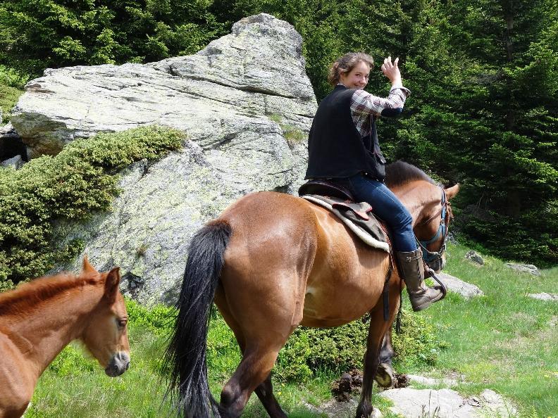 Image 1 - Trekking a cavallo sull'alpe