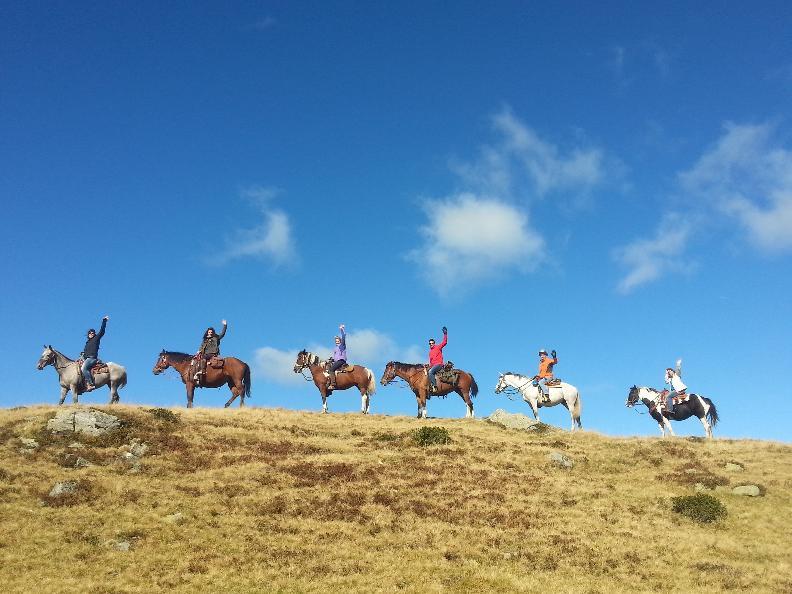 Image 2 - Trekking a cavallo sull'alpe